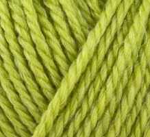816 Onion No.4 Organic Wool+Nettles Lime